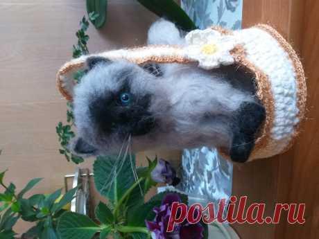 маленький бирманский котенок выполнен сухим валянием