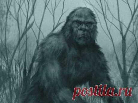Ужин со Снежным человеком: Странная встреча в уральских лесах