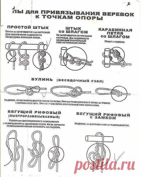 Терминология, элементы, узлы на конце веревки • Узлы для привязывания к точкам опоры • Узлы для связывания веревок • Схватывающие узлы • Специальные узлы
