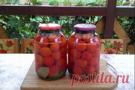 """Помидоры """"Волшебные"""" - за рассолом очередь! Вот и созрели в моей теплице помидорчики для консервации."""