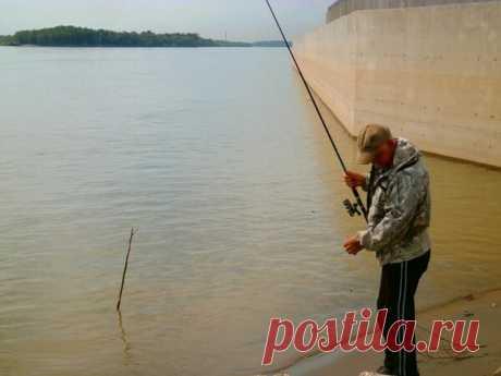 Хитрости рыбалки в паводок | Блоги о рыбалке, ремонте и интерьере, даче и огороде, рецептах, красоте и правильном питании