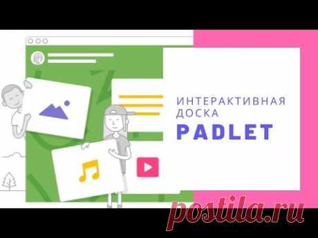 Как работать с интерактивной онлайн доской Padlet? How to use interactive board Padlet?