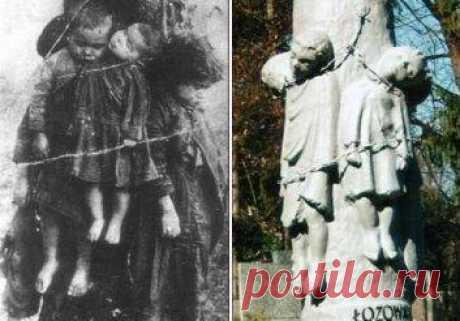 Ложь Сената иподлость Мацаревича: Волынский геноцид без убийц испасителей
