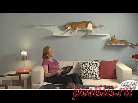 The Refined Feline Cat Furniture Showcase - YouTube