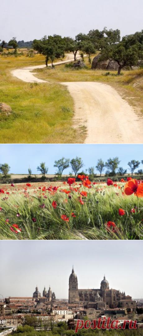 Как я прошла тысячу километров по Испании за 33 дня — Wonderzine — Wonderzine