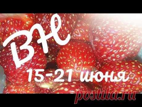 ВЫШИВАЛЬНАЯ НЕДЕЛЯ 15 - 21 июня/вышивка крестом и бисером