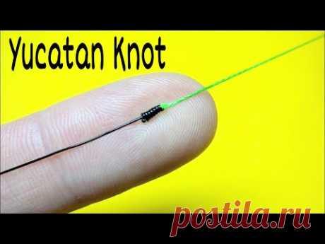 Друзья покажу вам отличный рыболовный узел, о котором мало кто знает, а именно как связать леску между собой. Соединительный узел yucatan knot. Этот узел очень эффективен и проверенный временем.