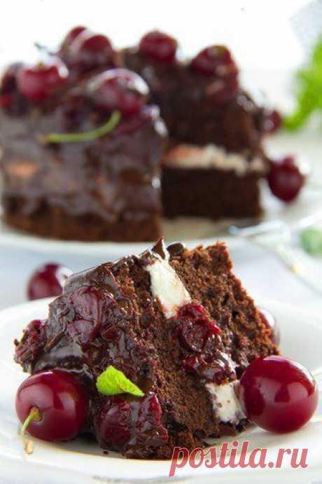 Шоколадный торт с бальзамической вишней. Очень, очень вкусный получился торт. Сочетание вишни и ... Шустрый Повар (Zippy Chefs): Шоколадный торт с бальзамической вишней. Очень, очень вкусный получился торт. Сочетание вишни и ...
