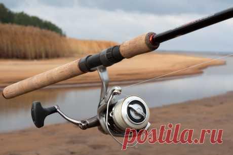 Как выбрать спиннинг? Расскажем как правильно выбрать удилище для спиннинговой ловли рыб.