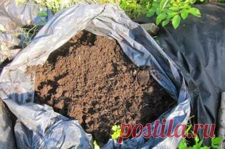 «Быстрый» компост в мешках: осенью закладываем, а весной уже пользуемся | Наша Дача | Яндекс Дзен