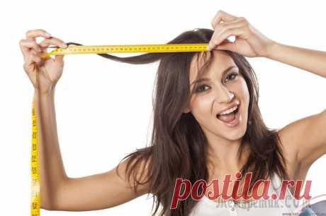 Способы разбудить спящие волосяные луковицы: лучшие рецепты Густые, красивые и здоровые волосы — это гордость любой женщины. Волосы же могут доставить ей и множество неприятностей, когда начинают сечься и болеть. Особенно неприятно бывает в тех случаях, когда ...