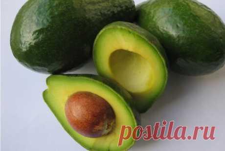 Авокадо польза и вред для организма и как его едят правильно