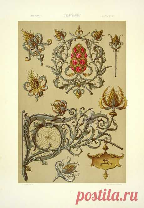 Коллекция картинок: Орнаменты Art Nouveau 19 век, ч.2