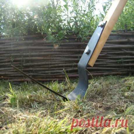 Копать или не копать, или как плоскорез Фокина увеличивает урожай и облегчает труд дачника
