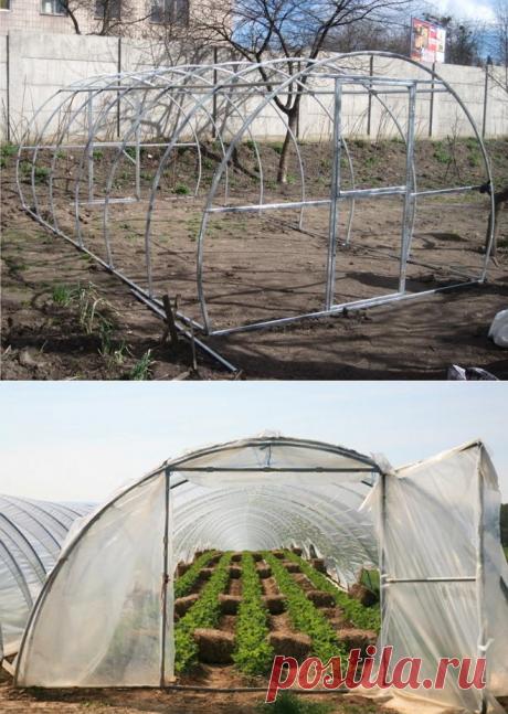 Как быстро и дешево построить арочную теплицу? | Дела огородные (Огород.ru)