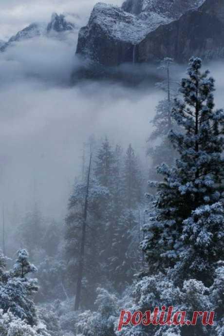 Зима - это потрясающее время года, наполненное чем-то магическим и таинственным.