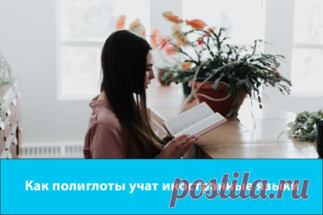 Как полиглоты учат иностранные языки   StudyQA   Яндекс Дзен