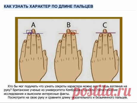Как определить характер по длине пальцев: исследования ученых Кембриджа
