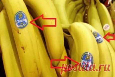 Что означают наклейки на фруктах - Сам себе волшебник