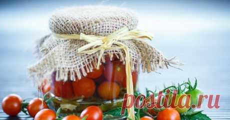 Как вкусно заквасить помидоры Пока лето не прошло, нужно сделать заготовки. Начнем с помидоров. В старину их квасили в больших деревянных бочках. Ну а мы, как люди современные и не настолько запасливые,...