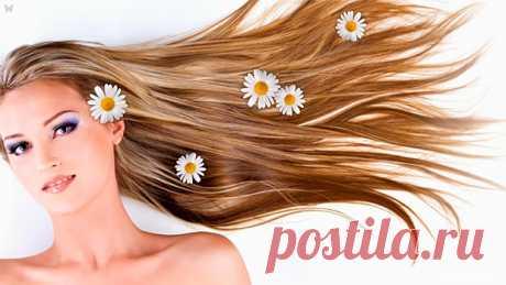 Домашняя косметика для волос. Рецепты по уходу за волосами. Правила изготовления и применения