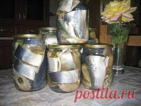 Наша семья уже давно не покупает соленую скумбрию или селедку в магазине, домашняя засолка намного вкуснее, да и безопастнее. Потрясающая рыбка получается! Хочется еще, и еще... Рекомендую! Ингредиенты:   1 кг скумбрии ИЛИ селедки 0,5 литра воды 2 столовые ложки соли 1 столовая ложка сахара Лавровый лист и черный перец горошком Рецепт приготовления:  Налить воду в кастрюлю и поставить на огонь. Добавить соль и сахар, довести до кипения. Добавить лавровый лист и черный пере...