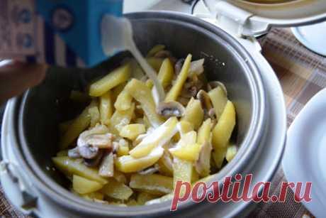 Картошка с грибами в мультиварке: 5 пошаговых фоторецепта