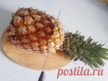 Растим ананас на подоконнике — Ботаничка.ru
