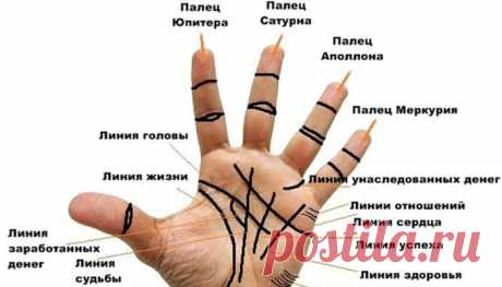 How it is correct to read lines on a palm? \/ Mysticism
