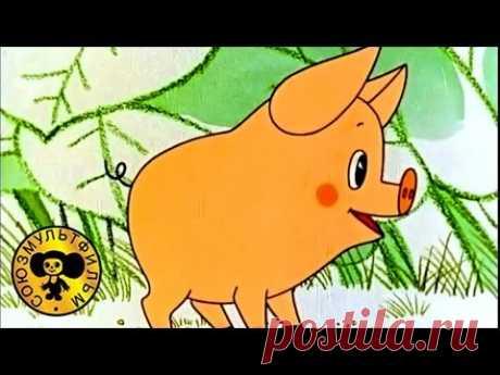 Мультики для детей - Чуня   О том как свинка была воспитанной
