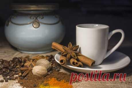 Почему важно пить какао и как его приготовить, рассказали специалисты - МК Волгоград