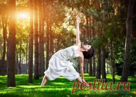 Тибетская гормональная гимнастика для оздоровления и долгожительства Со слов автора. Эта тибетская гимнастика, с широчайшим спектром целительного воздействия на гормональную систему и организм человека в целом, пришла на портал волшебно-чудесным образом. Началось с тог...