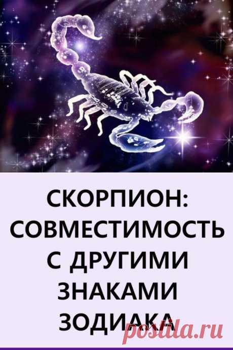 Скорпион: совместимость с другими знаками. Сегодня предлагаем узнать, какова же совместимость людей родившихся под знаком Скорпиона, с другими знаками зодиака.  #гороскоп #знакизодиака #скорпион