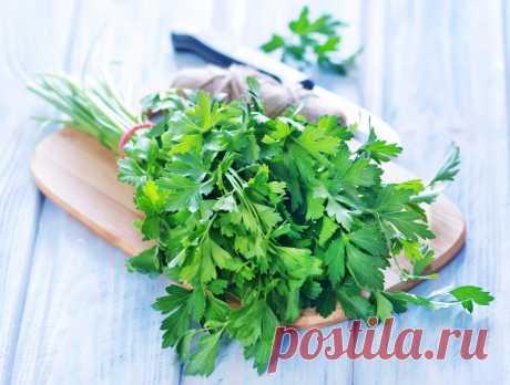 Лекарство от рака, анемии и еще 10 болезней. И растет оно на вашей грядке!  Эту траву мы используем в салатах, добавляем к мясным блюдам и супам, её корни можно употреблять в виде отваров и добавлять в рагу, писать Andrei Laslau. Это пряное растение – находка для желающих за…