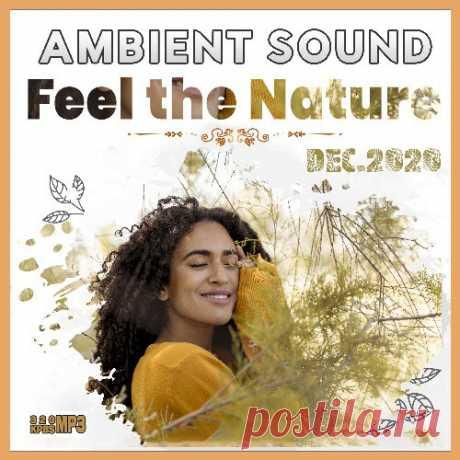 Feel The Nature - Ambient Sound (2020) Mp3 Когда наступает время морозных вьюг и долгих вечеров, пора включить музыку сборника «Feel The Nature». Спокойные, умиротворяющие и расслабляющие мелодии помогут встретить зимнюю грусть с улыбкой и насладиться этим замечательным временем года. Пора завернуться в плед, налить горячего какао и