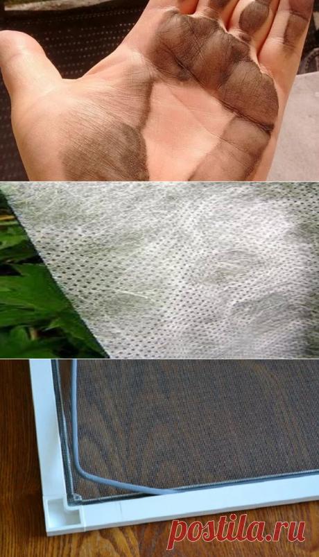 Черная пыль на подоконнике: чем она опасна и как защитить от неё квартиру | В темпі життя