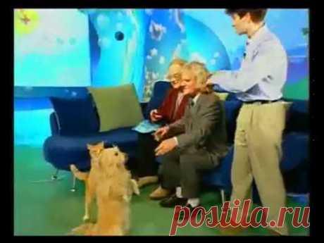 Последнее выступление Бутейко  К.П. на телевиденье