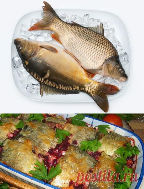 Запекаем рыбу в свекольном соку — Фактор Вкуса
