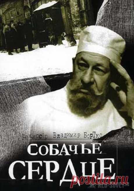 Собачье сердце русского Франкенштейна. | Красные Советы
