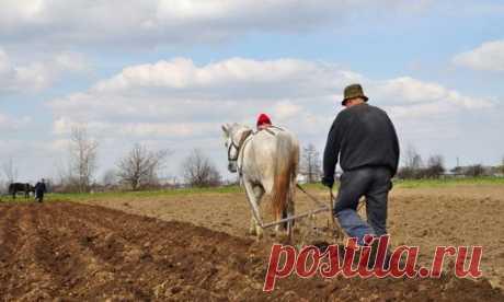 Традиционно труд земледельца состоял в том, чтобы вспахать (или вскопать) землю, удобрить ее и засеять семенами. Потом — пропалывать и