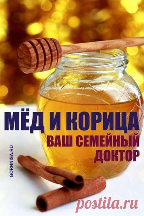 Мёд и корица - Ваш семейный доктор | ГОРНИЦА | Здоровье | Питание