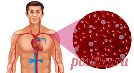 Быстрое улучшение кровообращения с помощью холодных компрессов (местное воздействие) | Wolf Fit 🐺 | Яндекс Дзен