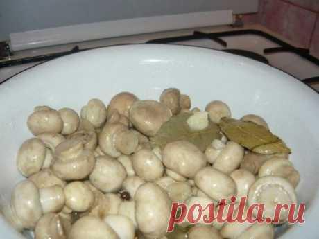 Маринуйте грибы сами  Ингредиенты:  - 1 кг... / Еда и напитки / Грибы / Pinme.ru