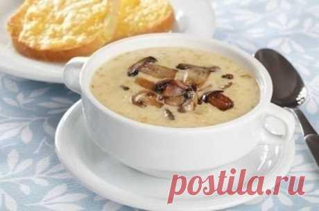 La sopa baja en calorías fúngica con el queso (69 kkal en 100 gr)