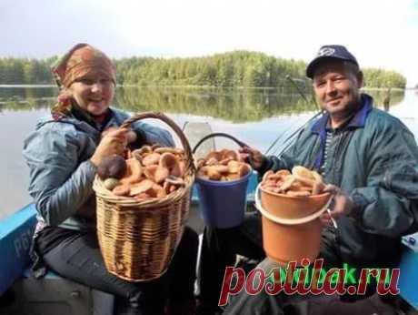 сколько можно хранить сухие грибы в домашних условиях: 24 тыс изображений найдено в Яндекс.Картинках