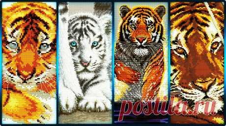Тигры и тигрята Baby tiger / Тигрёнок