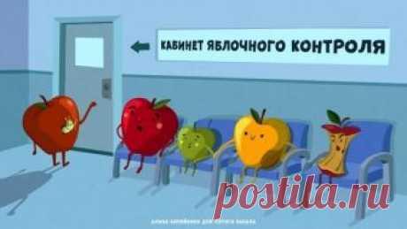 «Все напроверку!»— полезные советы повыбору вкусных яблок Эксперты «Роскачества» заявили, что, прежде всего,покупателям стоит обращать внимание нацвет плодов. Наша художница Алина Копейкина показала, как выглядит яблочная проверка наделе.
