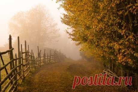 Раннее утро в Карпатском селе. Автор снимка – Татьяна Степанова: nat-geo.ru/community/user/23499 Хорошего дня!