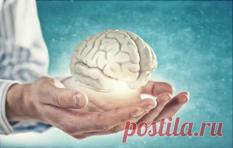 6 простых советов от невролога, чтобы сохранить здоровый ум до глубокой старости   ЛДЦ «Кутузовский»   Яндекс Дзен