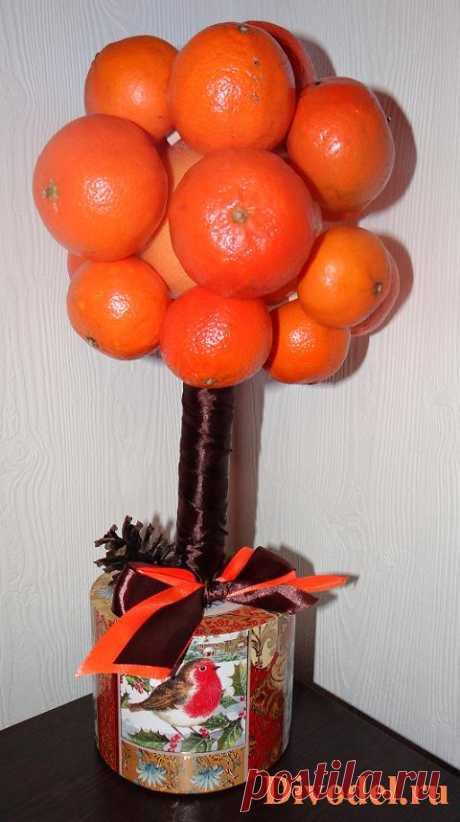 Топиарий из мандаринов | Подарки своими руками